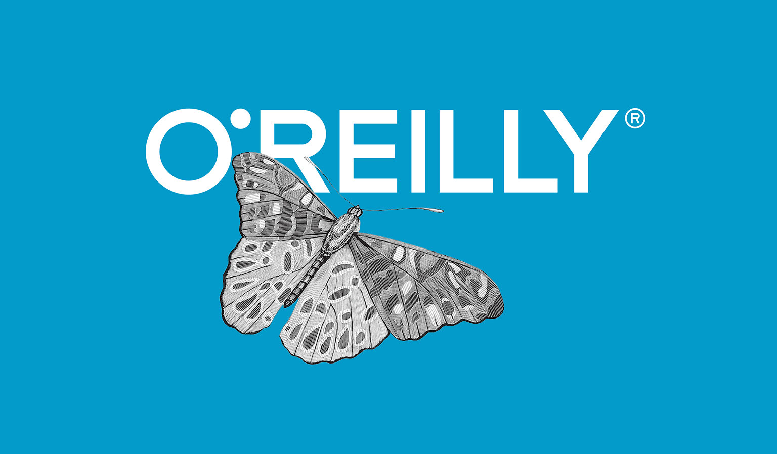 Oreilly big11
