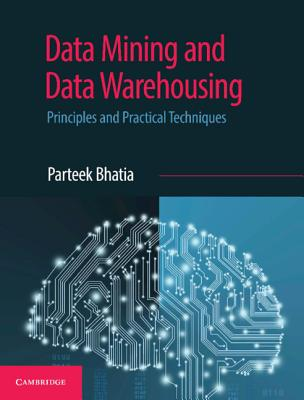 Data Mining and Data Warehousing: Principles and Practical Techniques-cover