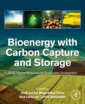 Bioenergy with Carbon Capture and Storage-cover