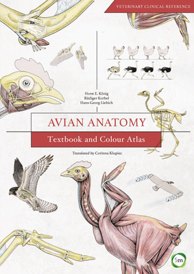 Avian Anatomy: Textbook and Colour Atlas-cover