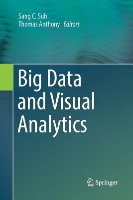 Big Data and Visual Analytics-cover