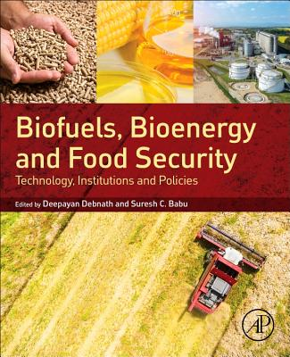 Biofuels, Bioenergy and Food Security: Technology, Institutions and Policies-cover