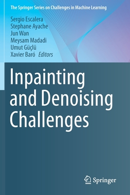 Inpainting and Denoising Challenges-cover