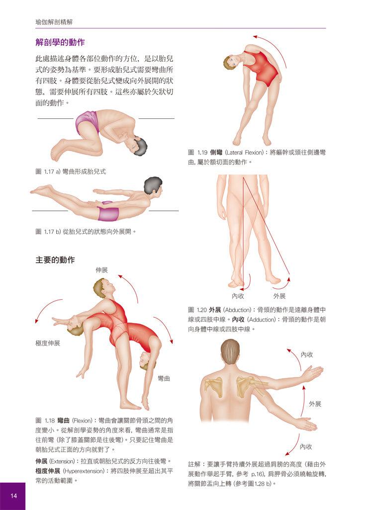 瑜伽解剖精解-從肌肉運作原理解析瑜伽體位-preview-1