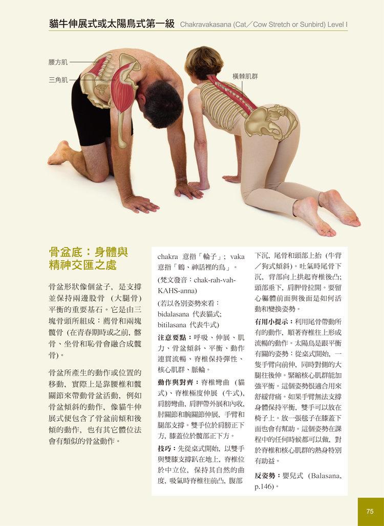 瑜伽解剖精解-從肌肉運作原理解析瑜伽體位-preview-6