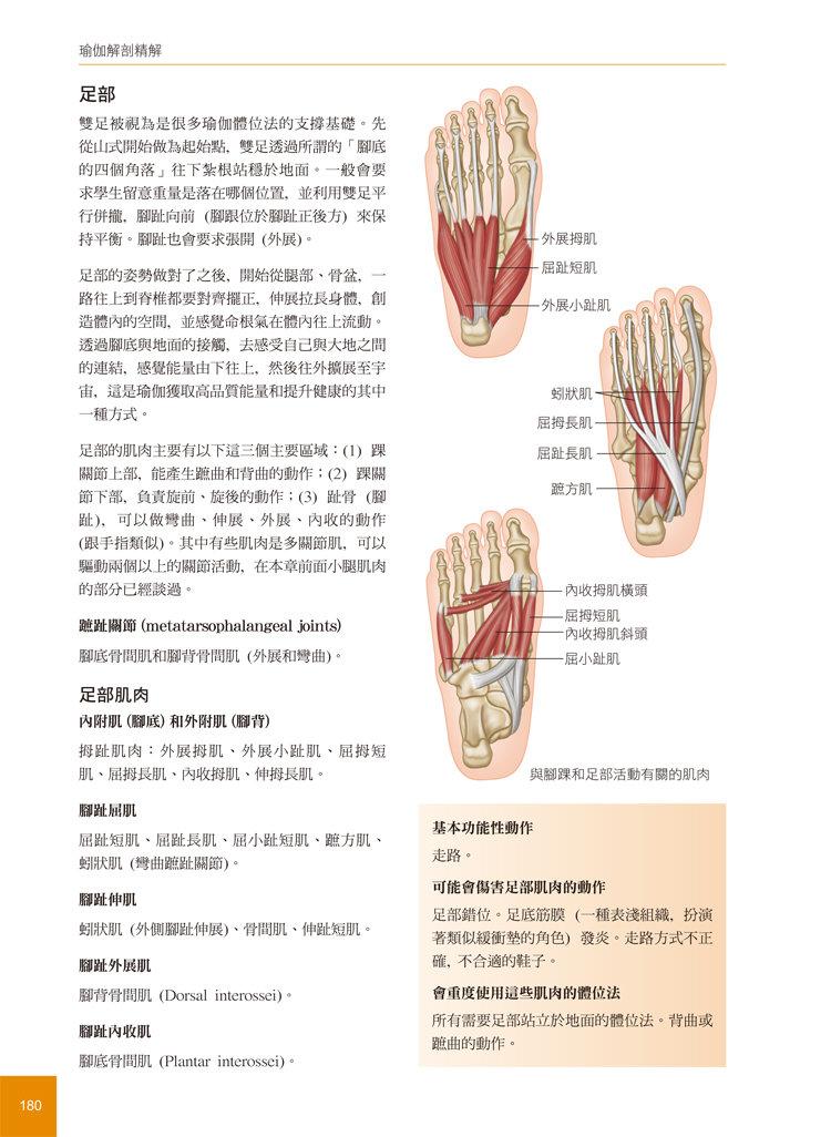 瑜伽解剖精解-從肌肉運作原理解析瑜伽體位-preview-10