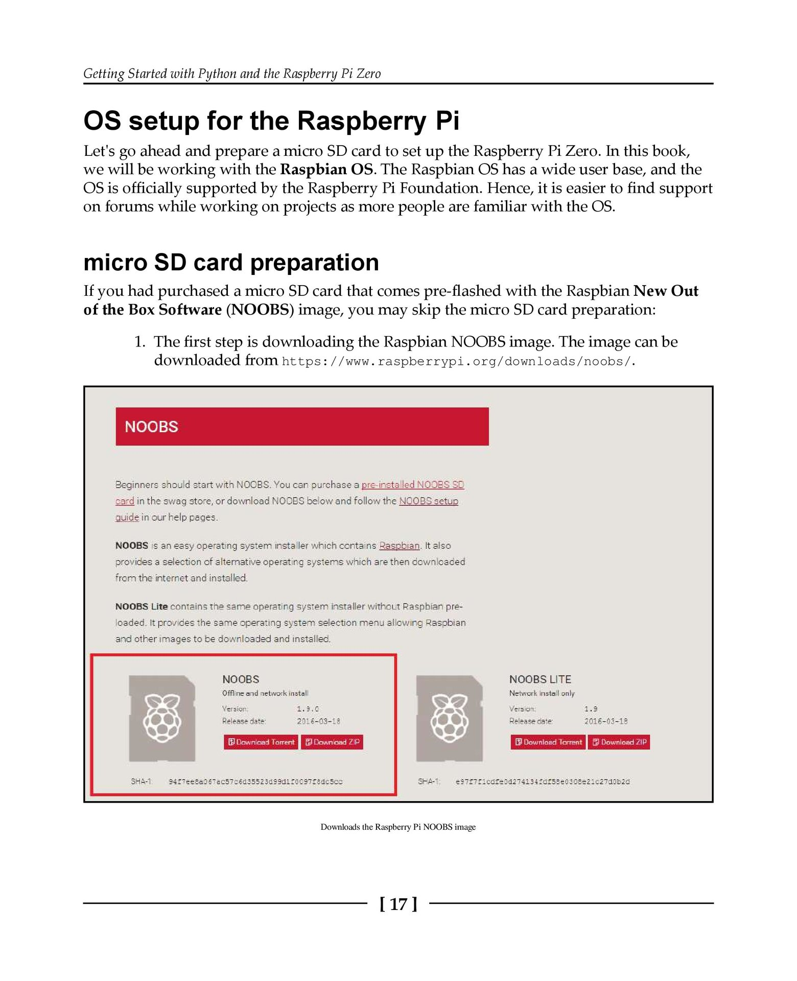 Python Programming with Raspberry Pi-preview-17