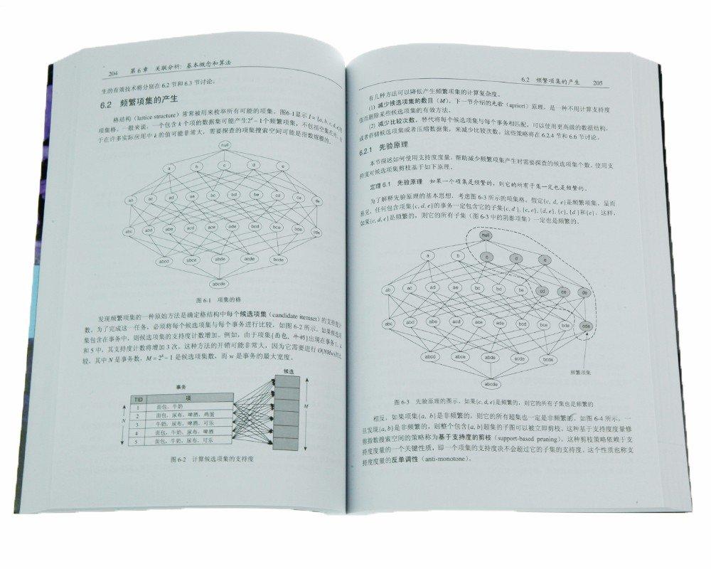 數據挖掘導論 (完整版) (Introduction to Data Mining)-preview-2
