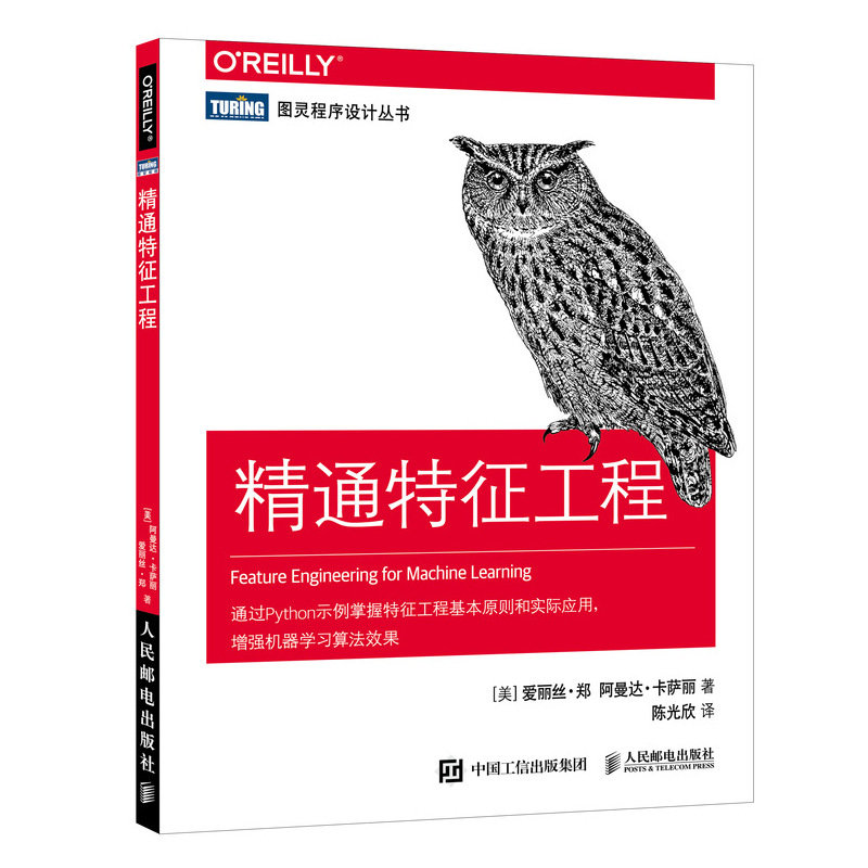 精通特徵工程 (Feature Engineering for Machine Learning: Principles and Techniques for Data Scientists)-preview-2