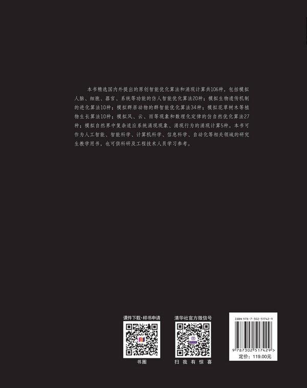 智能優化算法與涌現計算-preview-2