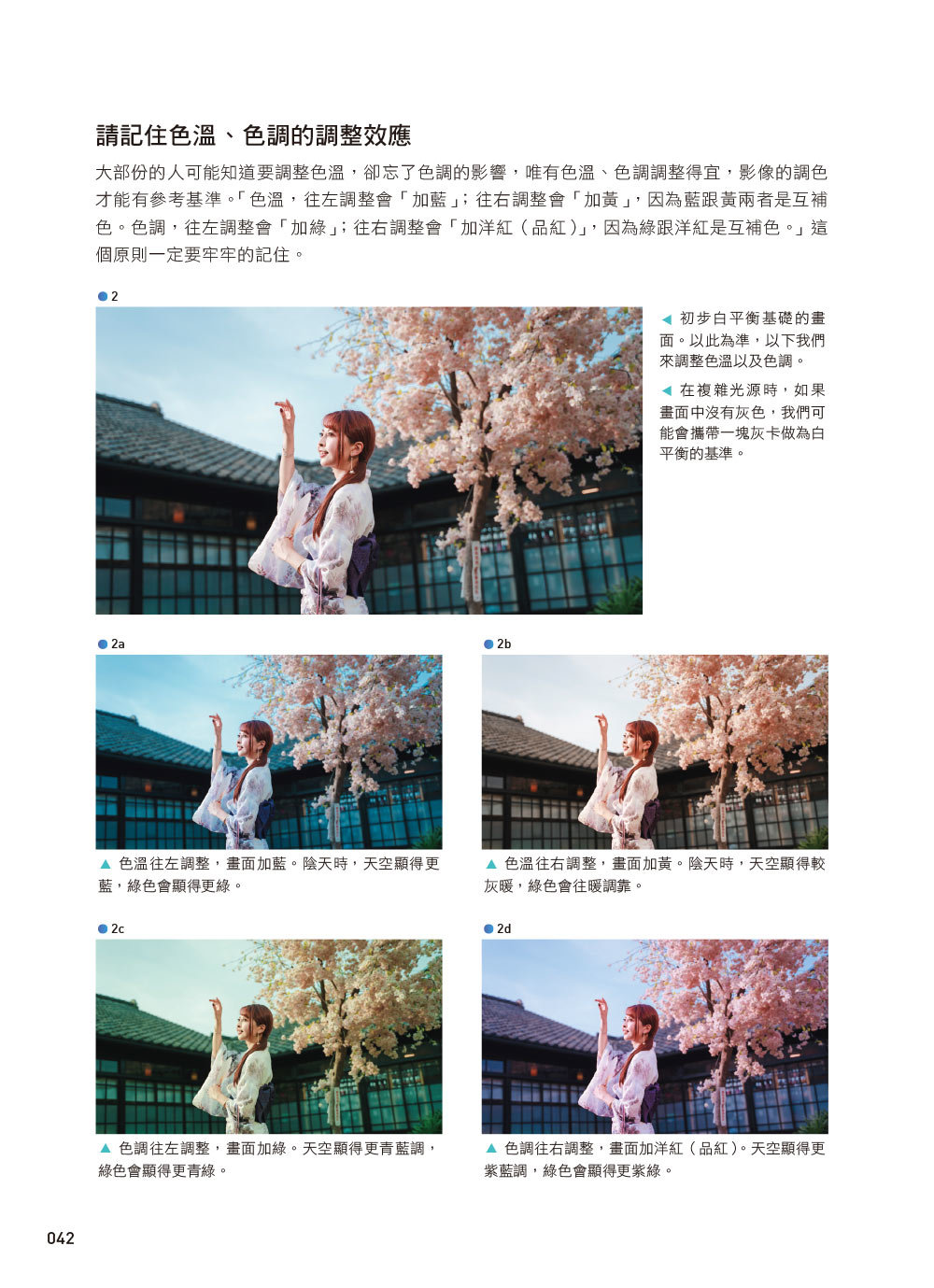 Lightroom Classic 魅力人像修圖經典版|調光調色x美膚秘訣x日系風x韓式婚紗-preview-4