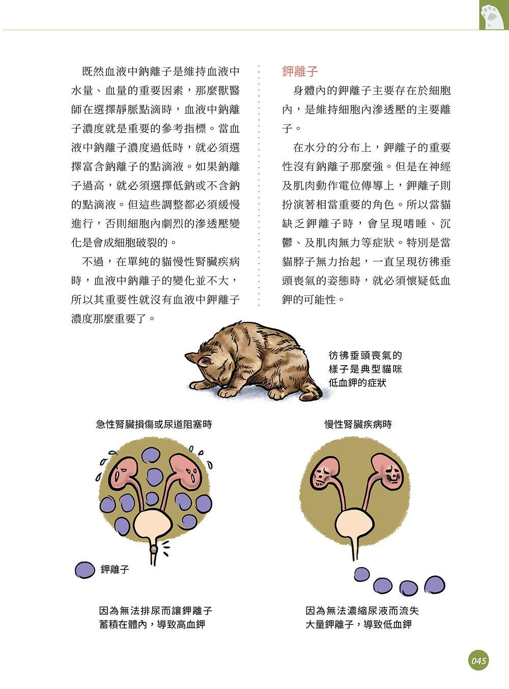 超強圖解 貓慢性腎臟疾病早期診斷與控制-preview-2