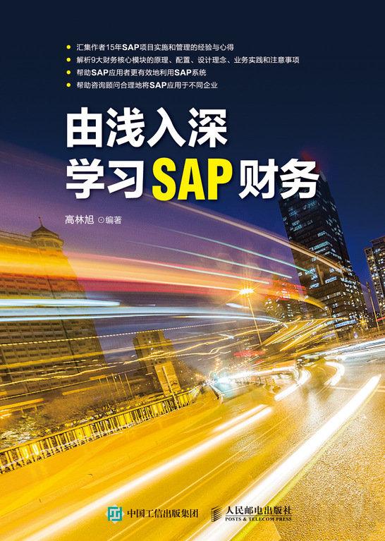 由淺入深學習 SAP 財務-preview-1