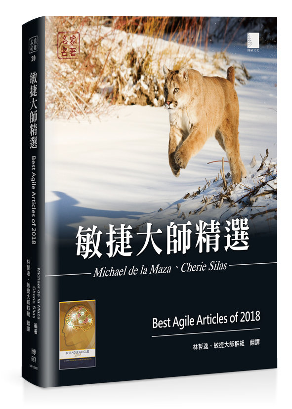 敏捷大師精選 (Best Agile Articles of 2018)-preview-1