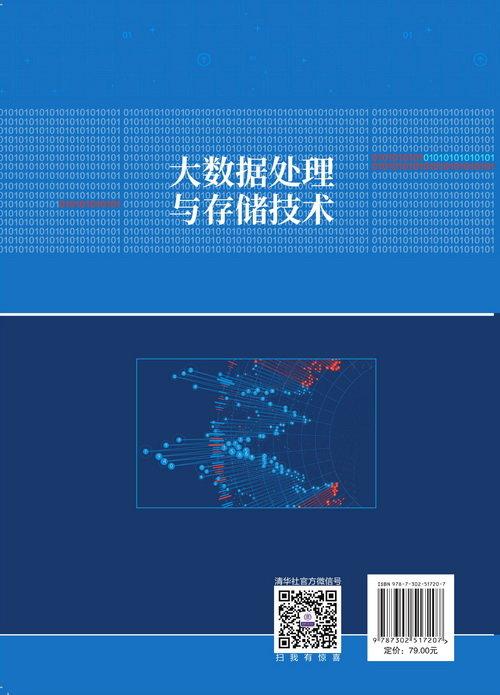 大數據處理與存儲技術-preview-2
