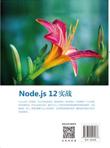 Node.js 12 實戰-preview-2