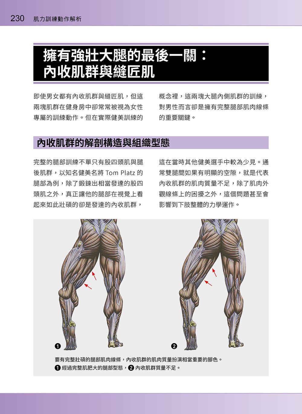 進階肌力訓練解剖聖經 2 - 高手只做不說的關鍵檔案 (附 加大手繪肌肉解剖圖海報)-preview-2