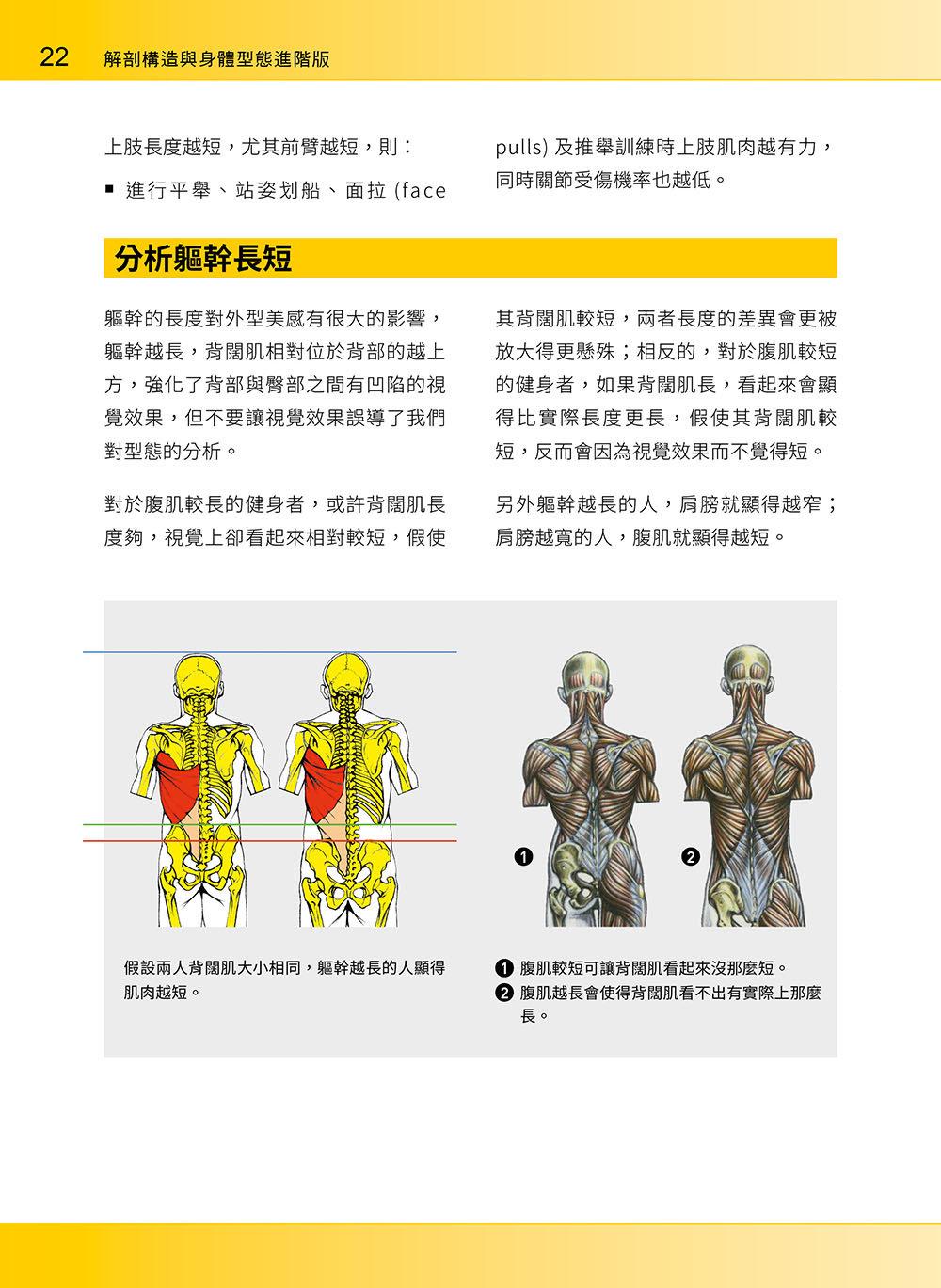 進階肌力訓練解剖聖經 2 - 高手只做不說的關鍵檔案 (附 加大手繪肌肉解剖圖海報)-preview-3