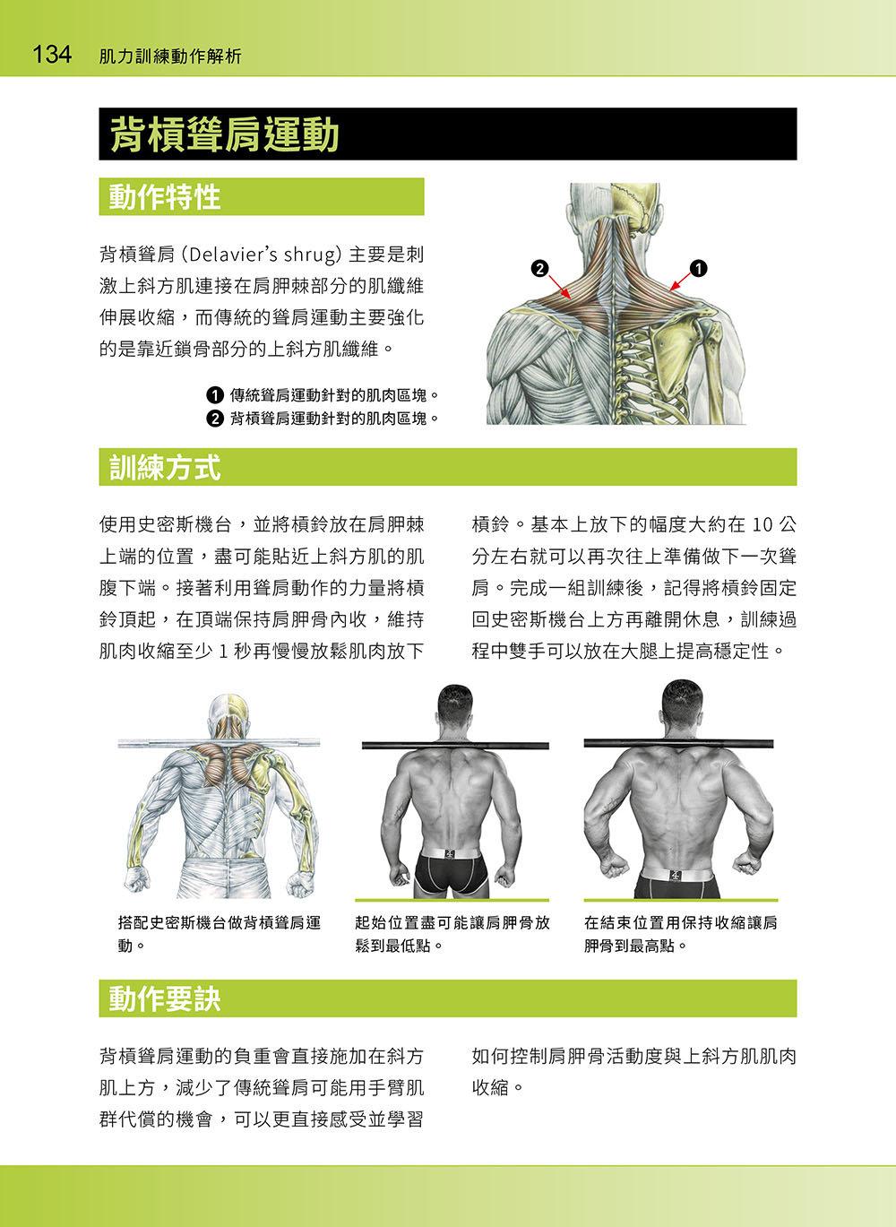 進階肌力訓練解剖聖經 2 - 高手只做不說的關鍵檔案 (附 加大手繪肌肉解剖圖海報)-preview-6