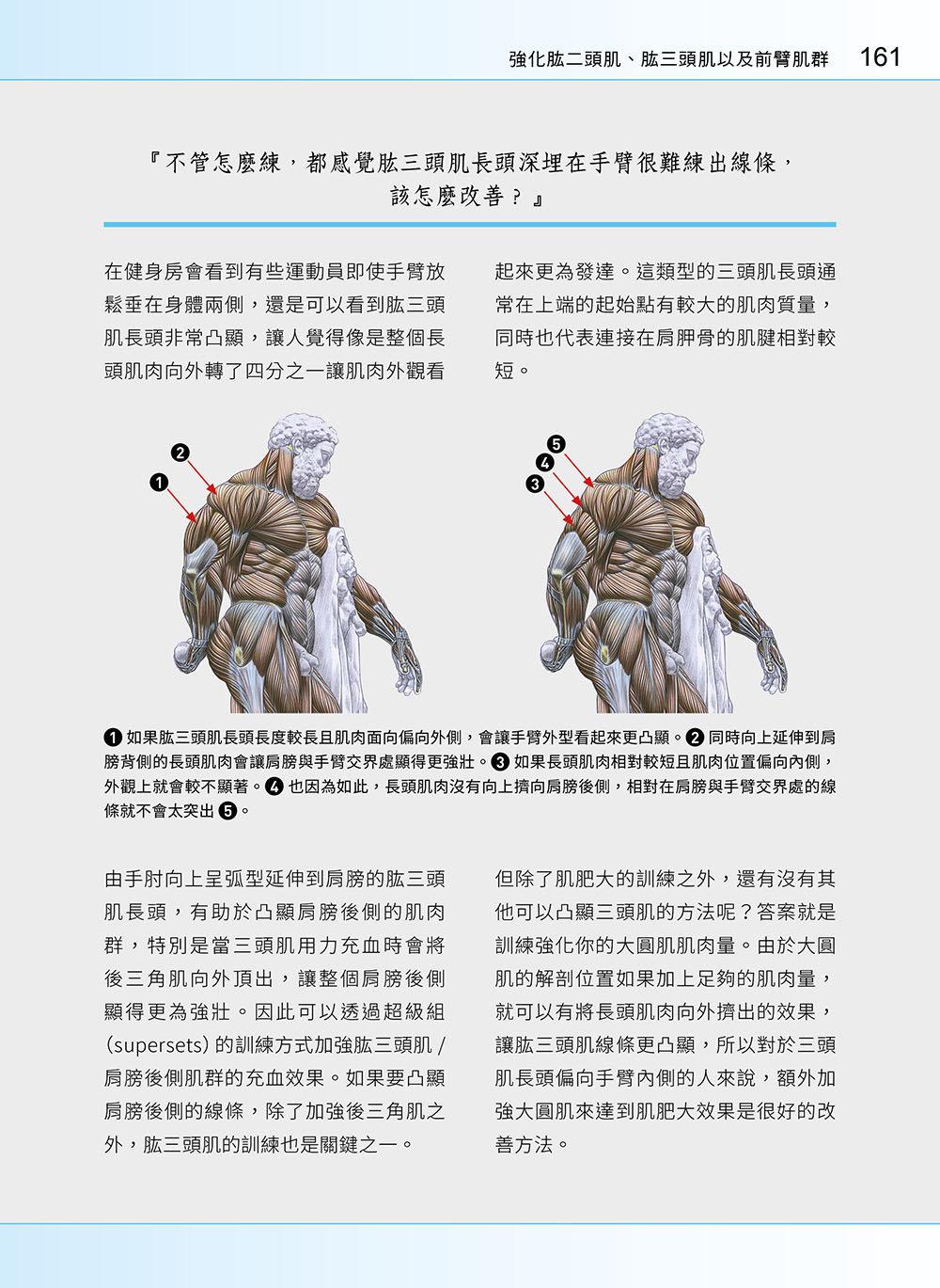 進階肌力訓練解剖聖經 2 - 高手只做不說的關鍵檔案 (附 加大手繪肌肉解剖圖海報)-preview-7