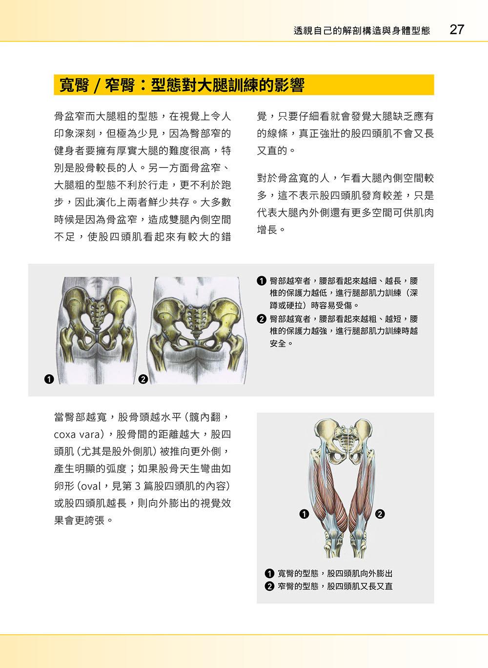 進階肌力訓練解剖聖經 2 - 高手只做不說的關鍵檔案 (附 加大手繪肌肉解剖圖海報)-preview-9