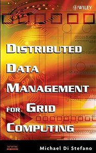 Distributed Data Management in Grid Environments-cover