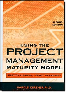 Using the Project Management Maturity Model: Strategic Planning for Project Management, 2/e-cover