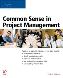 Common Sense in Project Management-cover