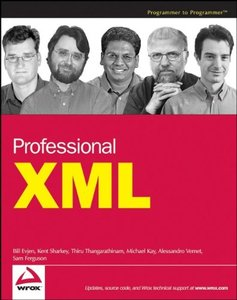 Professional XML-cover