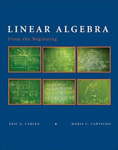 Linear Algebra: From the Beginning-cover