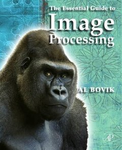 The Essential Guide to Image Processing (Paperback)-cover