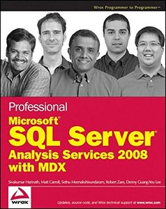 Professional Microsoft SQL Server Analysis Services 2008 with MDX (Paperback)-cover