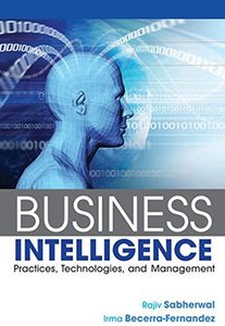 Business Intelligence (Paperback)