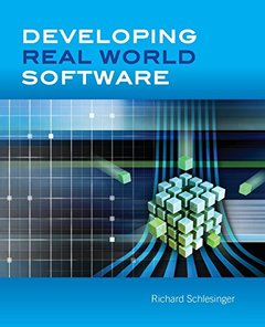 Developing Real World Software (Paperback)