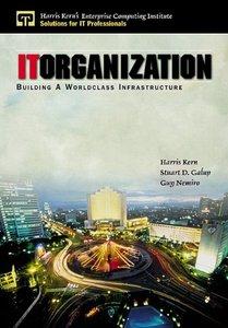 IT Organization: Building  A Worldclass Infrastructure (paperback)