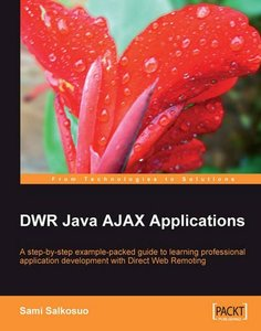 DWR Java AJAX Applications (Paperback)