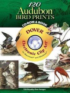 120 Audubon Bird Prints (Paperback)