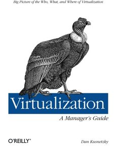 Virtualization: A Manager's Guide (Paperback)-cover
