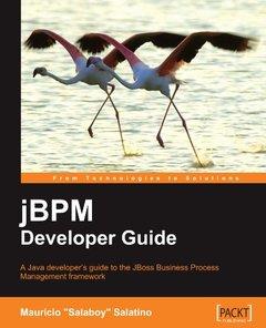 jBPM Developer Guide