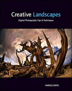 Creative Landscapes: Digital Photography Tips and Techniques (Paperback)-cover