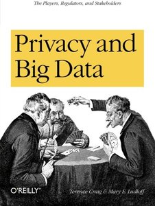 Privacy and Big Data (Paperback)