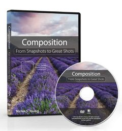 Composition: From Snapshots to Great Shots DVD (Misc. Supplies)-cover