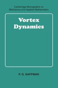 Vortex Dynamics (Paperback)