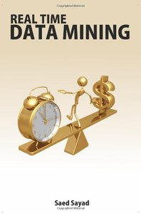 Real Time Data Mining (Paperback)