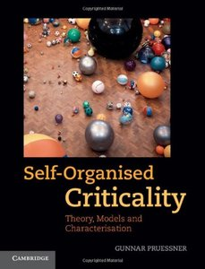Self-Organised Criticality: Theory, Models and Characterisation (Hardcover)