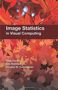 Image Statistics in Visual Computing (Hardcover)-cover