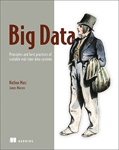 Big Data: Principles and best practices of scalable realtime data systems (Paperback)-cover