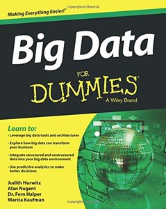 Big Data For Dummies (Paperback)