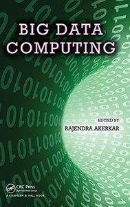 Big Data Computing (Hardcover)
