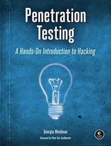 Penetration Testing: A Hands-On Introduction to Hacking (Paperback)-cover
